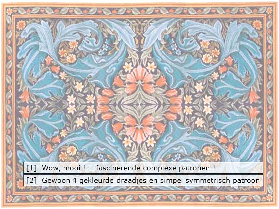 [1] Wow, mooi ! … fascinerende complexe patronen !